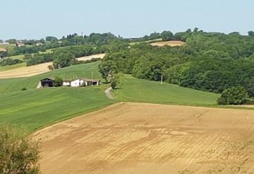 Exploitation Agricoles A Vendre Dans Le Gers Toutes Nos Offres
