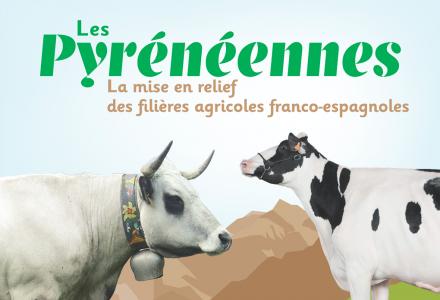 À la rencontre des agriculteurs aux Pyrénéennes
