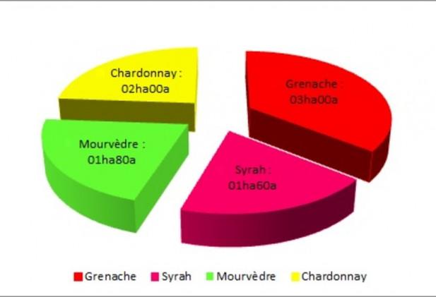 Safer Occitanie