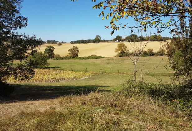 Proche Gimont propriété de 25,7 ha de terres.